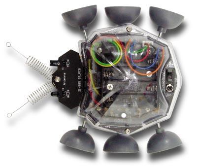 ck21885 - main